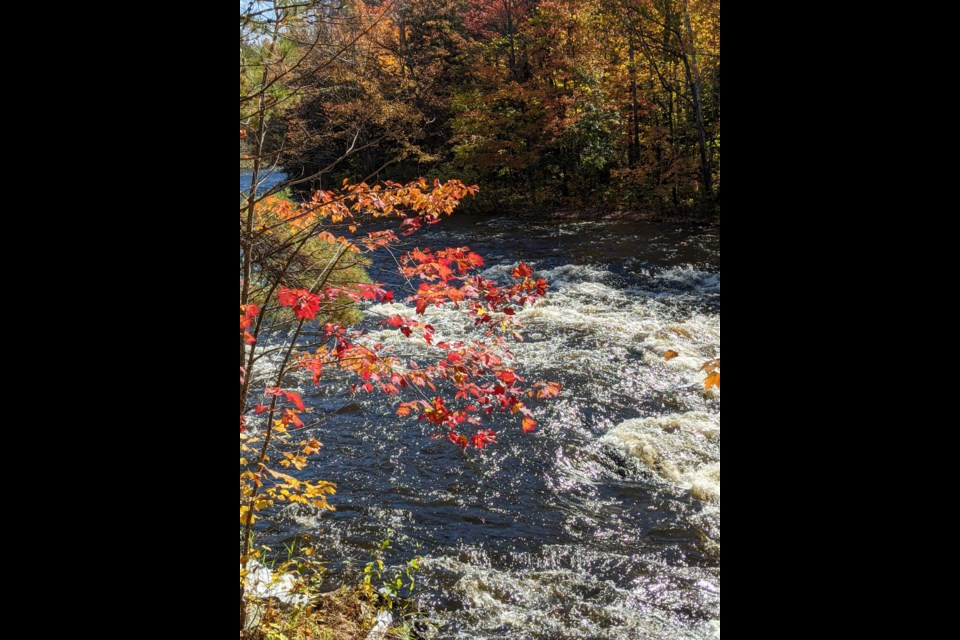 Last week the story was about waterfalls here is one of my fall subject photos along the Amable du Fond River within Samuel de Champlain Provincial Park.