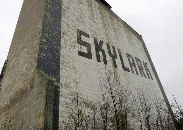 Skylark Drive-In Facebook photo-02
