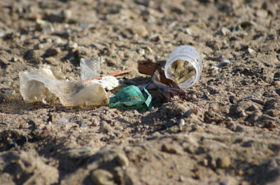 Lake Huron garbage