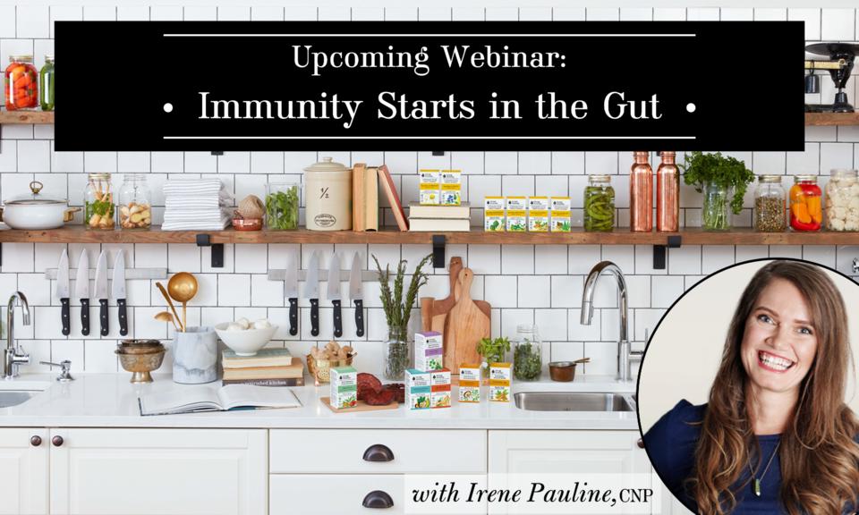 Immunity Starts in the Gut webinar banner