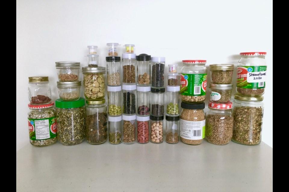 Seeds saved by Marie-Ève Trigg.