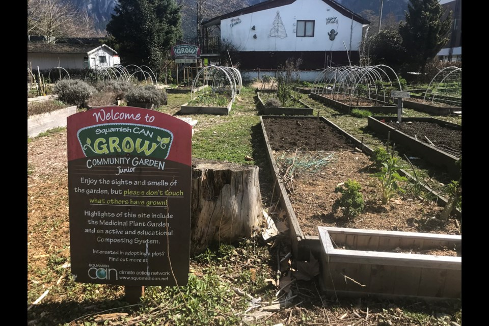 The current Squamish CAN community garden downtown.