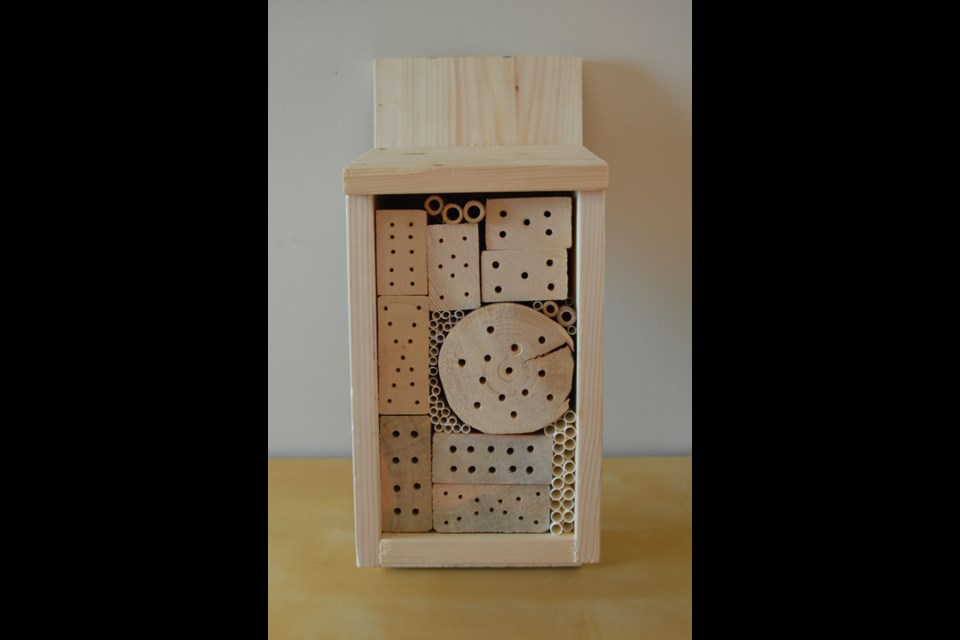 Bee hotels attract tunnel-nesting solitary bees such as sweat bees,and other solitary pollinators, by providing them tunnels where they can lay their eggs. EALT/Photo