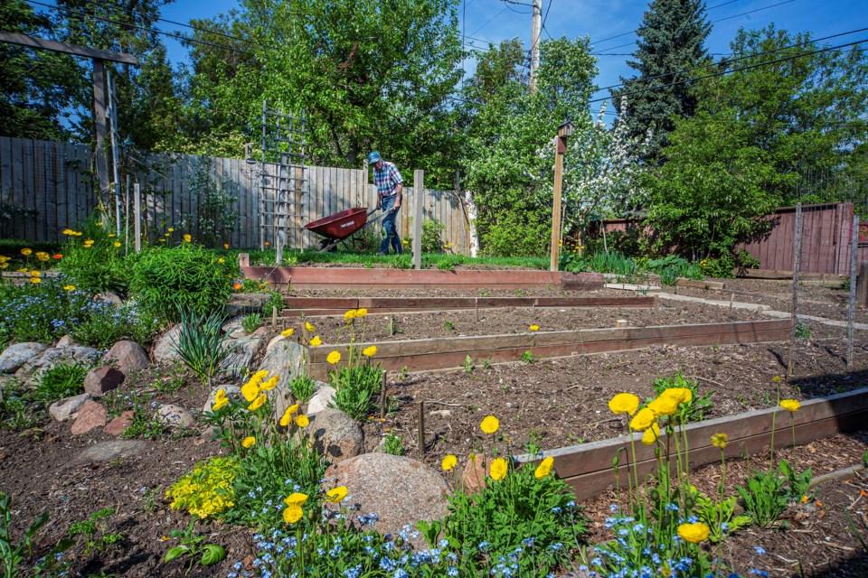 1506 AT HOME Schroder - subversive gardening