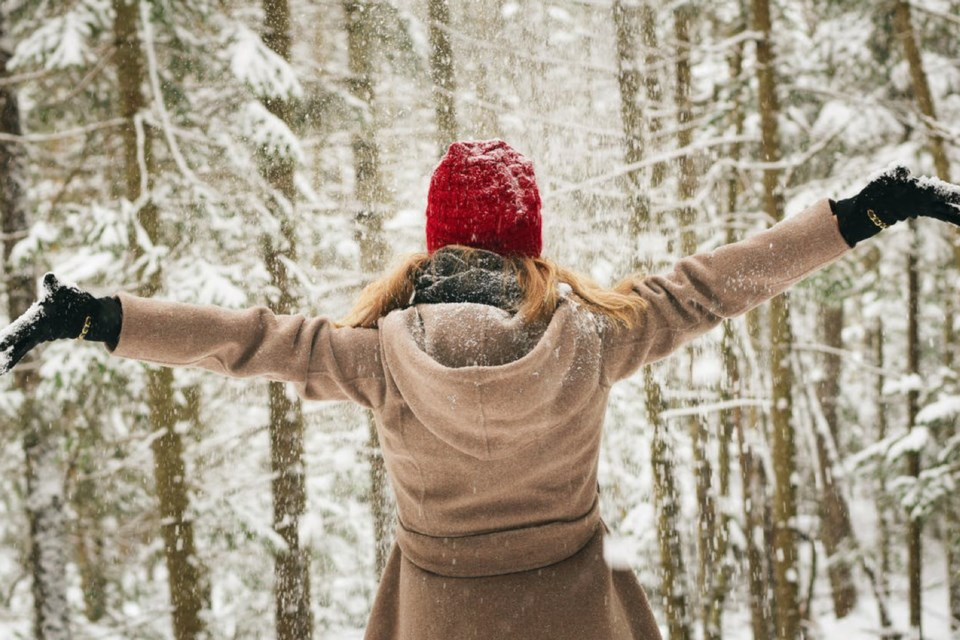 7 - Winter Festival in Lakeland