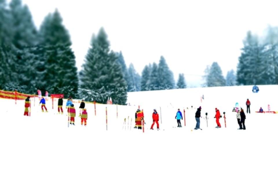 9 - Snow School