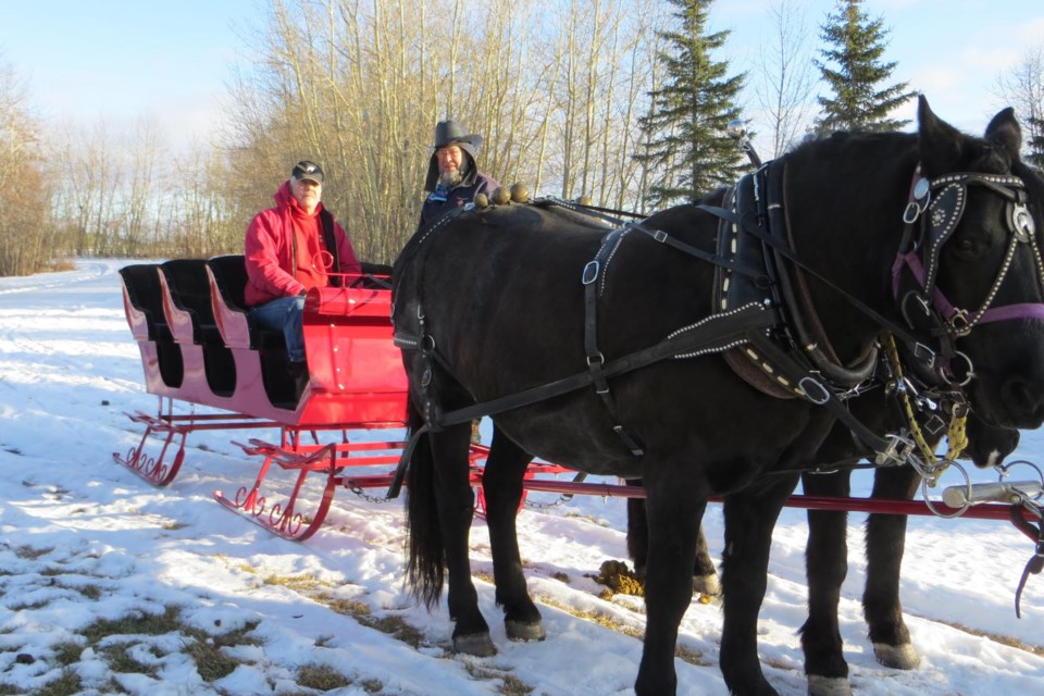 Morris Presisniuk (left) sits on his new horse-drawn sleigh with good friend Elvin Greianya. The two horses pulling the sleigh are Knight and Peanut.