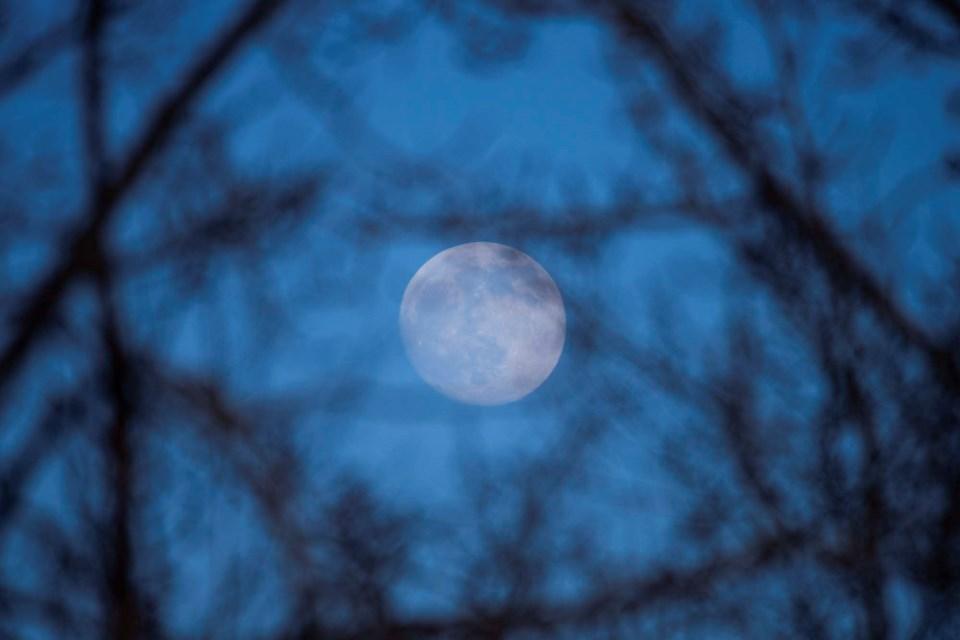IG moon CC 2537