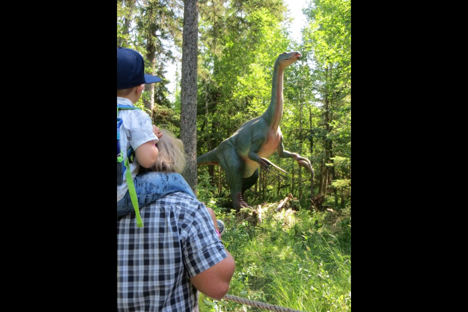 A grandpa and his grandson listen to the rumble of a therizinosaurus and comment on its long claws. The animatronic dinosaur is one of Jurassic Forest's  latest aquisitions. ANNA BOROWIECKI/St. Albert Gazette