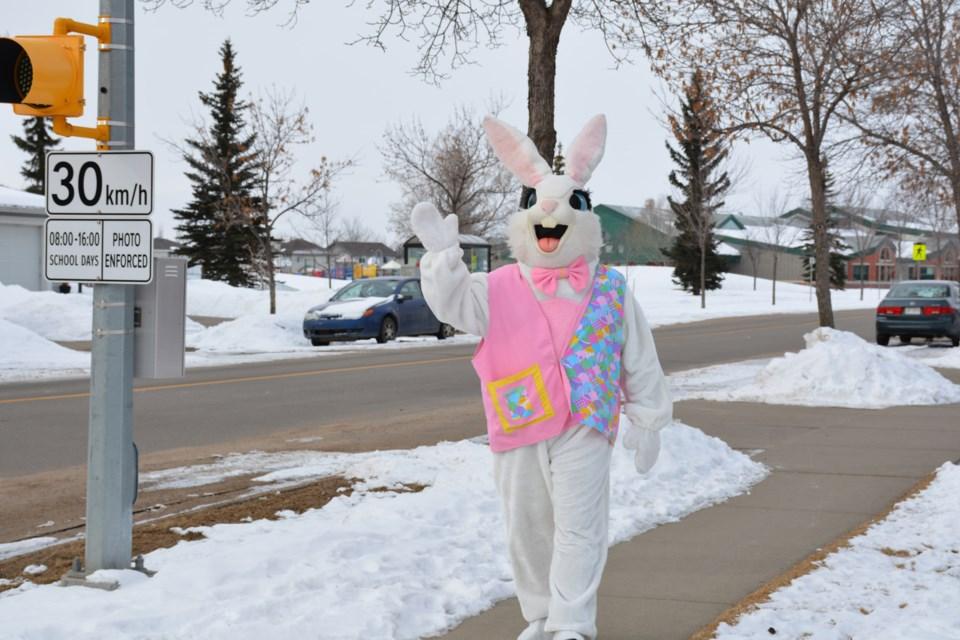 SA bunny sh