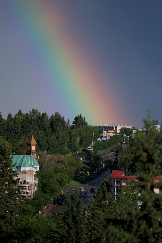 SA rainbow DR07 copy