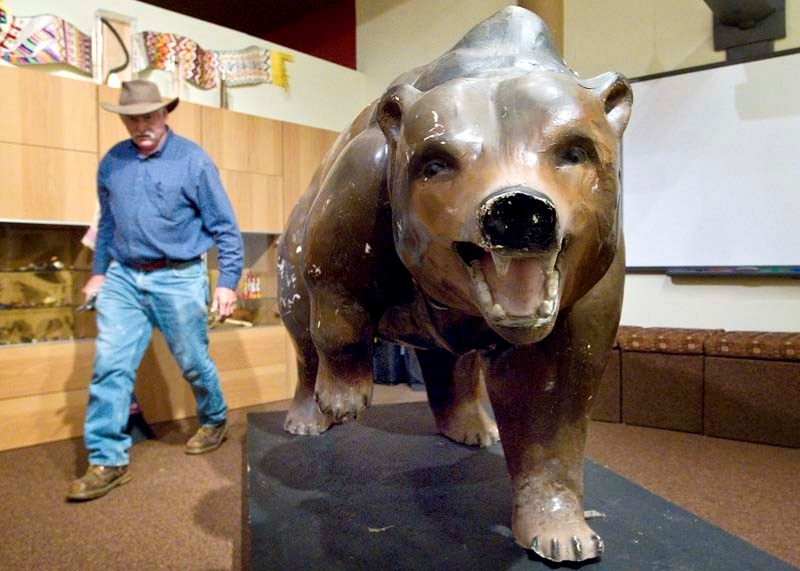 BEAR WRANGLER – Heritage sites manager Merlin Rosser helps install the recently re-discovered Bruin Inn bear at the Musée Héritage Museum on Thursday.