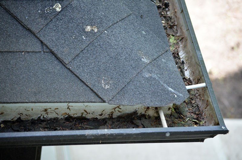Cleaning leaves and debris from eaves troughs is just one way to prevent water from building up where it is not wanted.