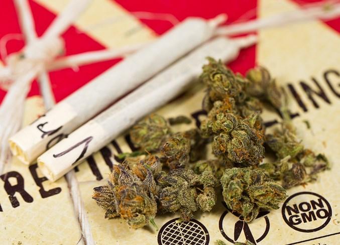 0610 Cannabis Feat CC 7236.eps