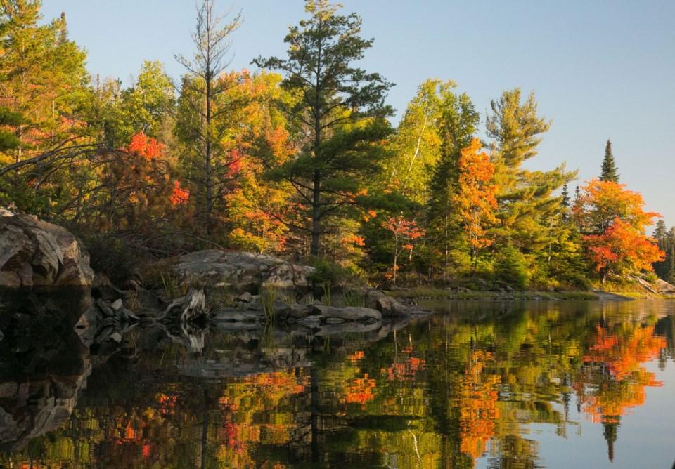 041019_mark-size-fall-colours