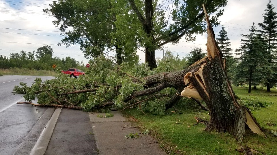 Tuesday afternoon's thunderstorm brought high winds, heavy rain and lightning to most parts of the city, but the hardest hit area was Coniston where high winds brought down trees and branches, scattered debris and knocked out power to about 200 people.