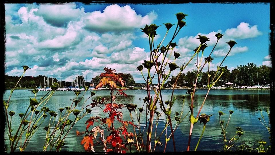 090921_lori-porter-ramsey-lake-end-of-summer2 crop