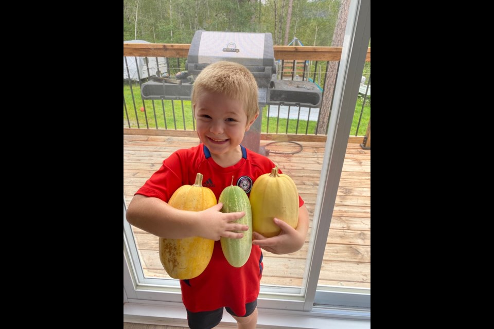 Corbin MacLean, 6, shows off some of the produce (looks like some spaghetti squashes) grown through the Home Garden Project. (Supplied)