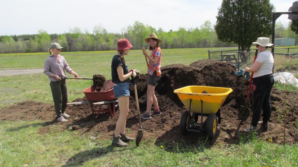 260521_shared-harvest-group-soil-pile