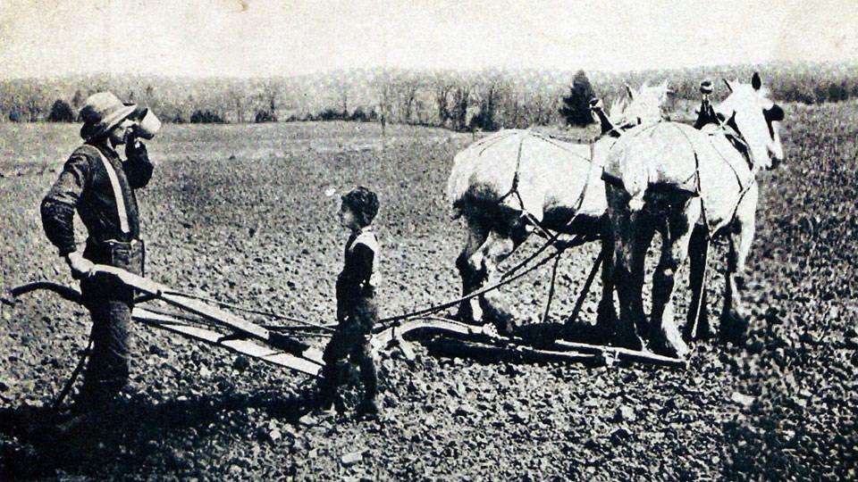 farming-ploughingSized