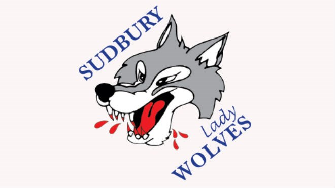 311213_lady_wolves1