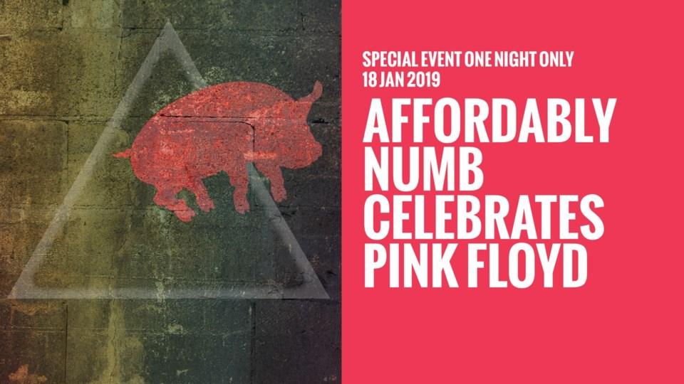 140119_PinkFloyd_Tribute