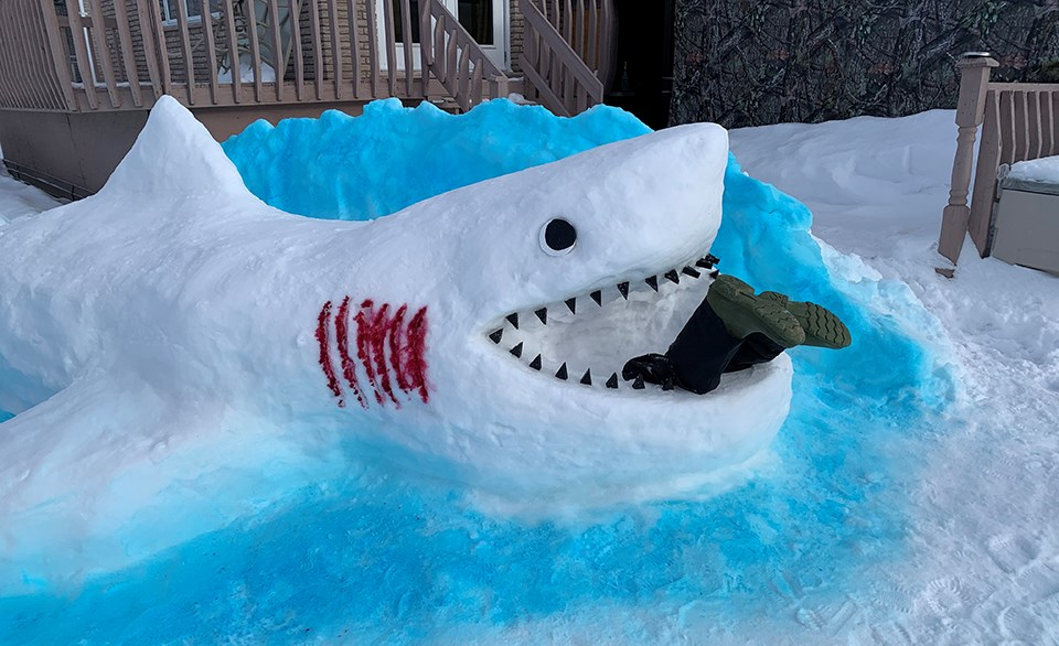 Chantal Paquette and a handful of family members took shifts to create Sammy the shark in her parent's backyard in Wahnapitae during the lockdown in January and February.