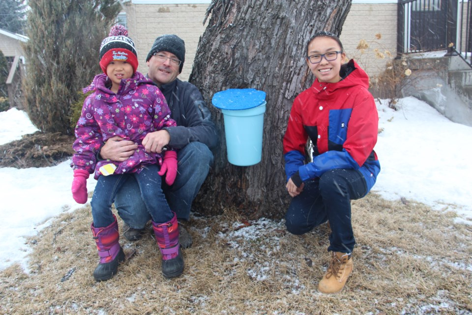 Mike Thompson and his two daughters, Leila (left) and Julia, pose next to the maple tree in their front yard. (Heidi Ulrichsen/Sudbury.com)