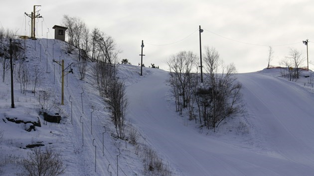 110119_lively_ski