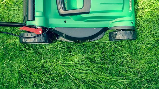 200419_KF_yard_cleanup_sized