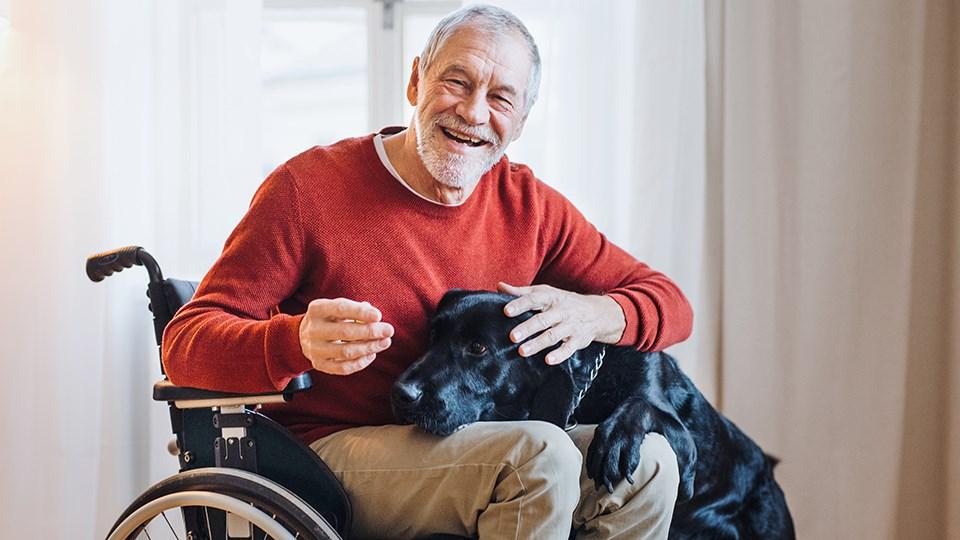 070620_KF_disability_tax_bonus
