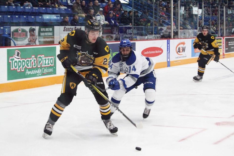 Sudbury Wolves face off against the Hamilton Bulldogs at the Sudbury Arena in the last of a three-game homestand. (Keira Ferguson/ Sudbury.com)