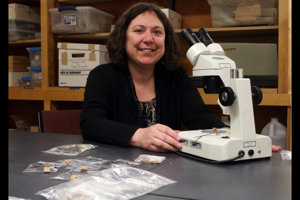 Tamara Varney, an associate professor in the anthropology department at Lakehead University, is working with a new technology to determine the source of lead contamination in 18th century Royal Navy sailors.