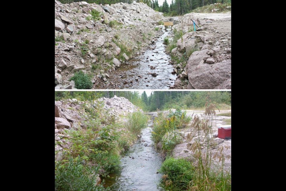 Photos taken in 2012 (top) and 2015 (bottom) show how vegetation along the stream developed in a relatively short period (IISD/ELA photos)