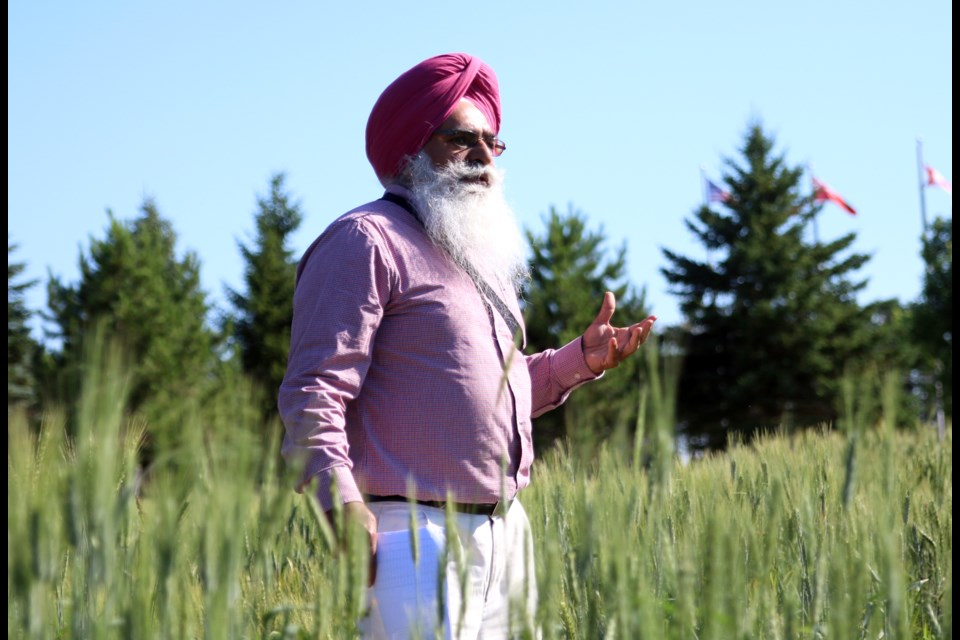Tarlok Singh Sahota, director of the Agricultural Research Station, leads the annual summer tour on Tuesday. (Photos by Doug Diaczuk - Tbnewswatch.com).