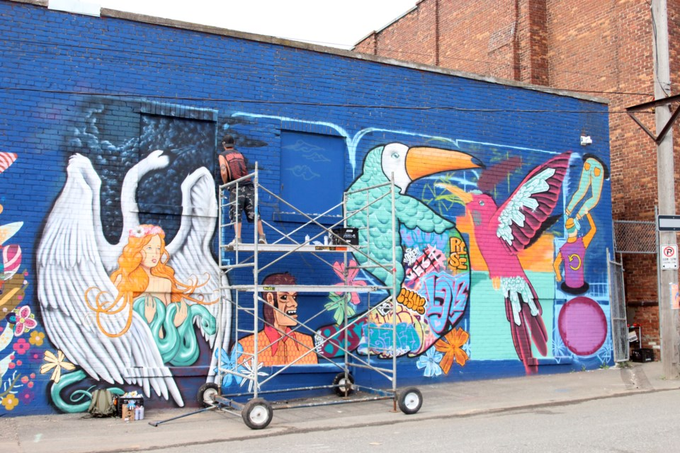 The city's first graffiti alley will be unveiled during the Lost and Found Art Festival this Saturday on Cooke Street. (Photos by Doug Diaczuk - Tbnewswatch.com).