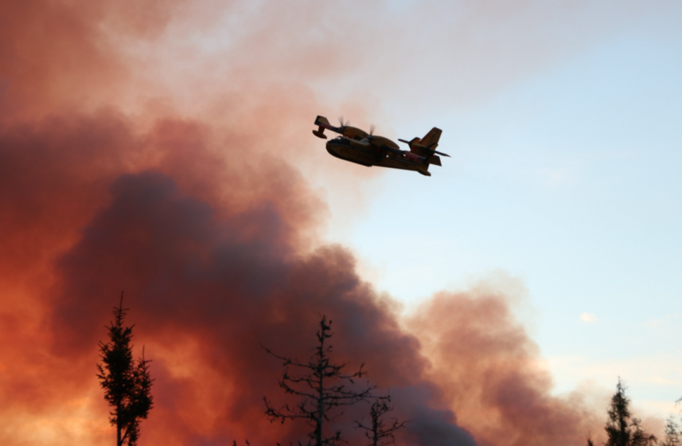 Forest fire Aug 2021