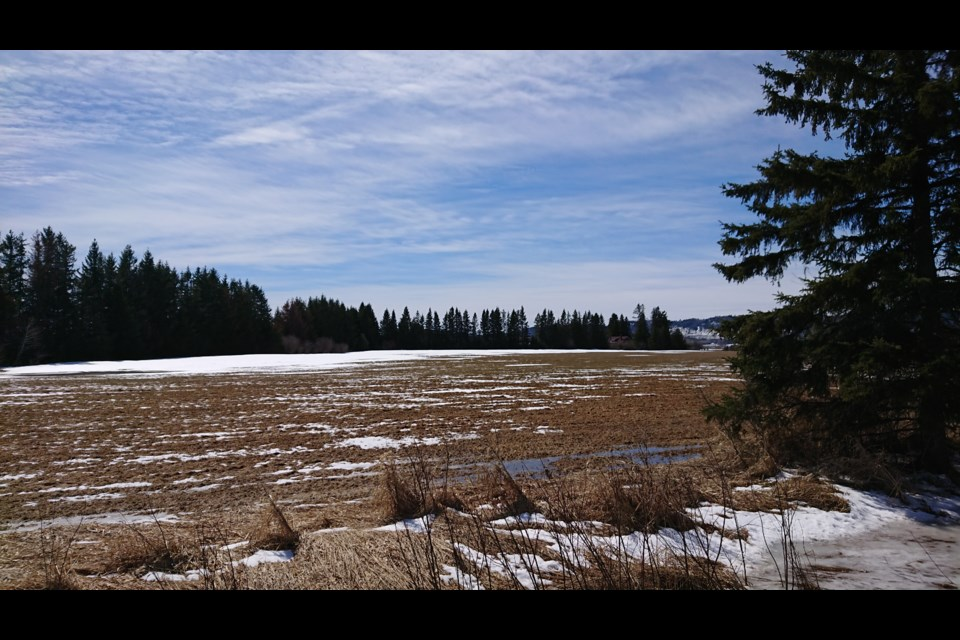 A Neebing landowner proposes to build a multi-service clinic at Highway 61 and Boundary Drive (Alana Pickrell/TBTV)