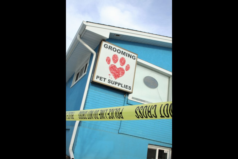 Thunder Bay Police investigate an incident at Pet-Tastic on High Street Saturday afternoon.