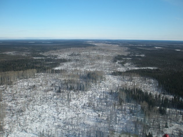 Sand ridges such as this could be part of a future road to the Ring of Fire mineral zone in Northwestern Ontario (photo courtesy Moe Lavigne/KWG)