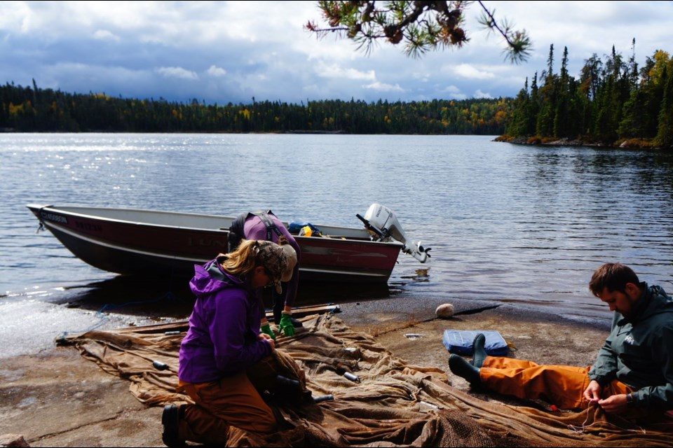 IISD-ELA scientists are shown mending trap nets in the Experimental Lakes Area in 2020 (IISD-ELA photo)