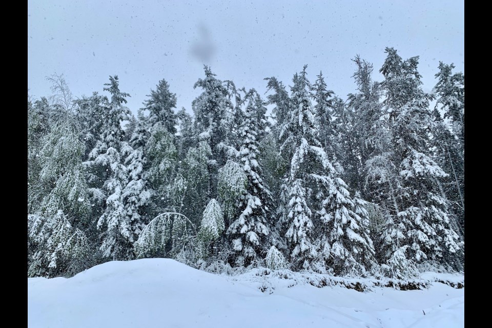 Parts of Northern Ontario woke up to as much as 10 centimetres of snow on Thursday. (Photo courtesy of Rachael Oskam).