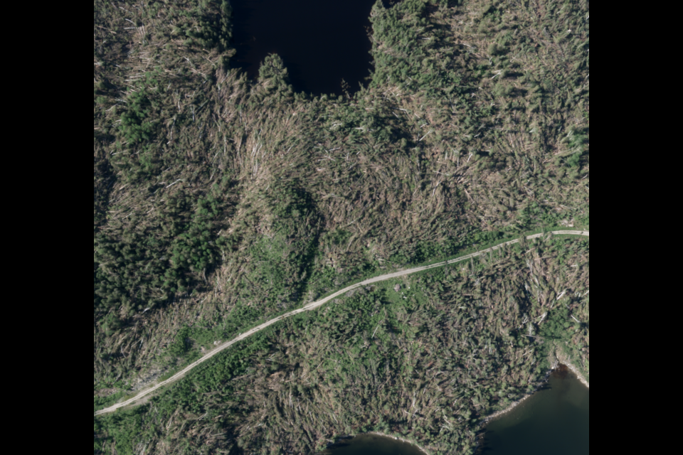This image taken from a satellite shows a huge swath of downed trees near Brooks Lake, in Northwestern Ontario, after a June 8, 2020 tornado (Northern Tornadoes Project photo)