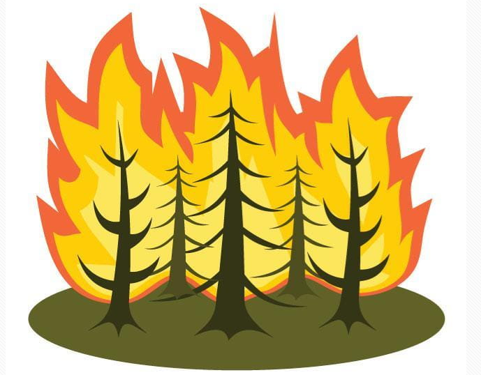 forest fire graphic