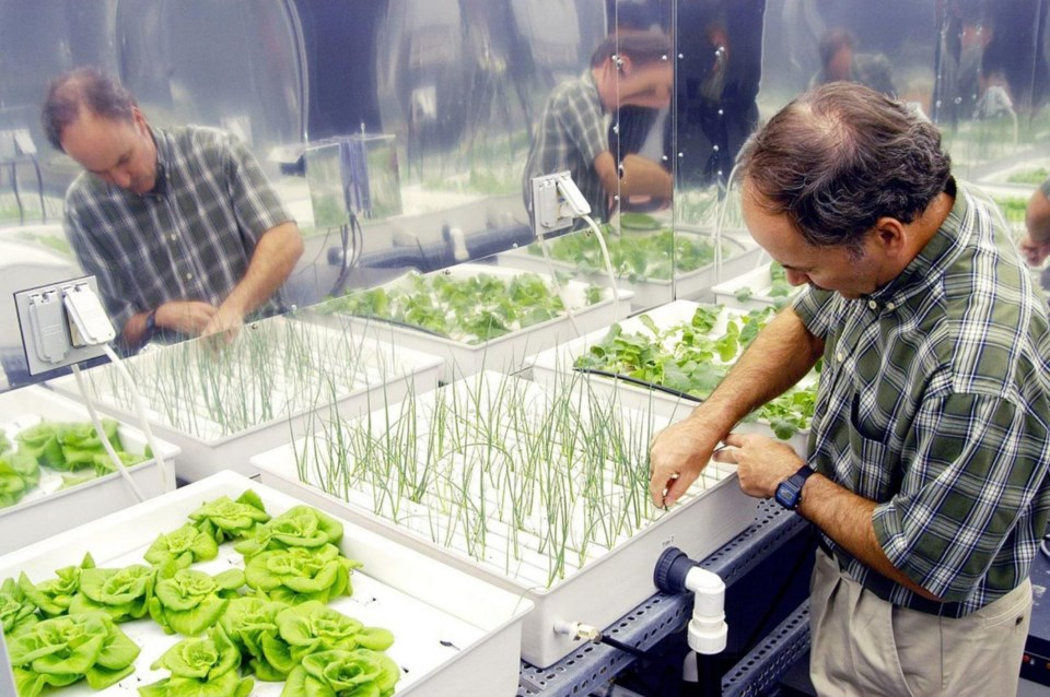 Hydroponic-agribusiness