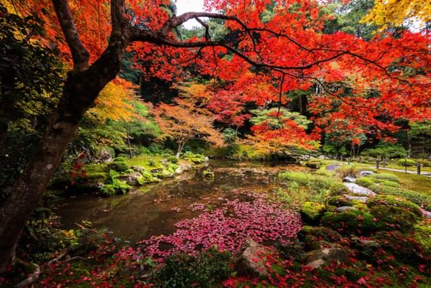 spiritual-autumn