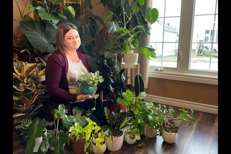 Melissa Ann Silverson, Fancy Plants Timmins owner showing her collections of plants that she sells online.