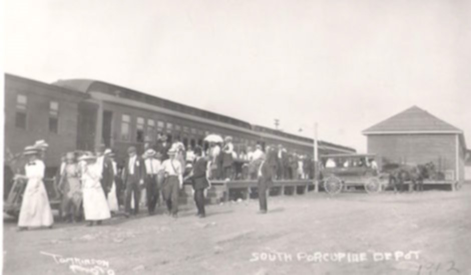 Porcupine train_polarr