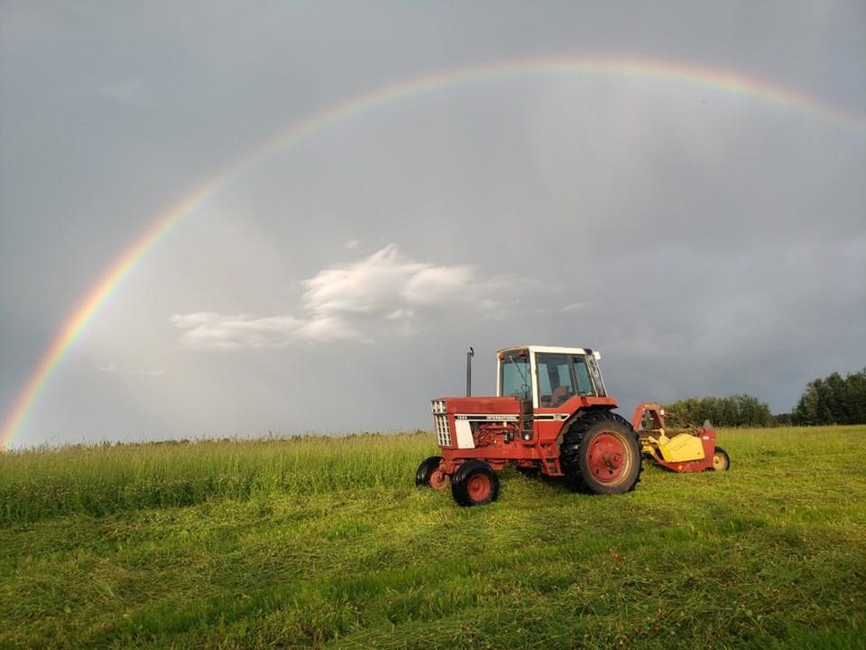 Cutting hay under the rainbow Justin Hensch