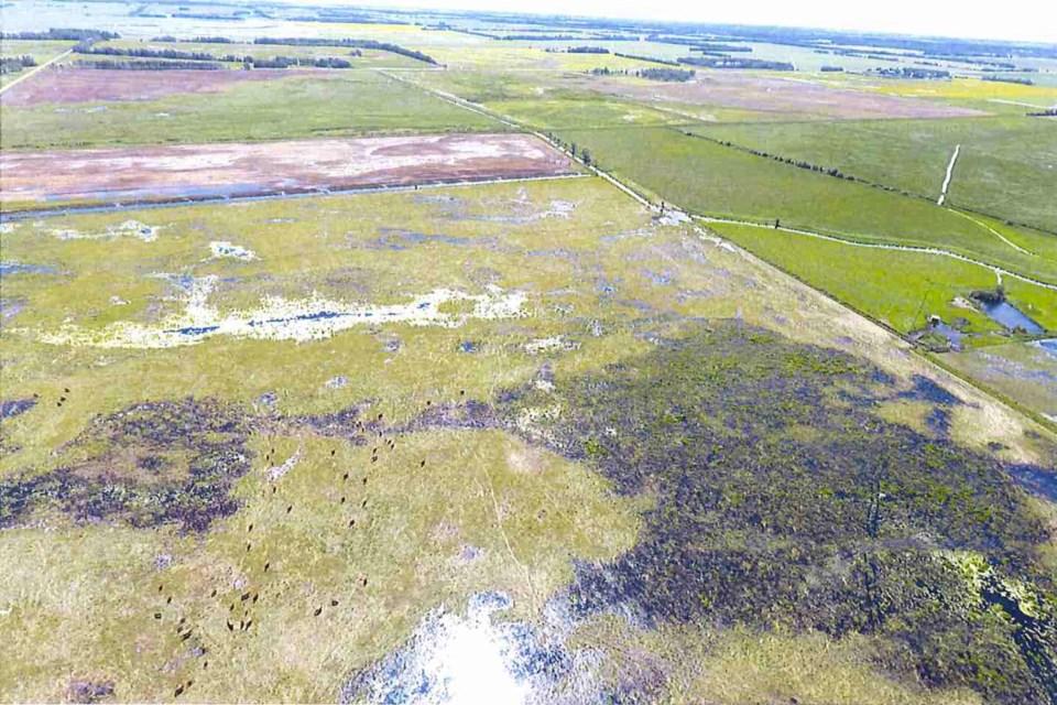 Overland flooding Lebeaus web